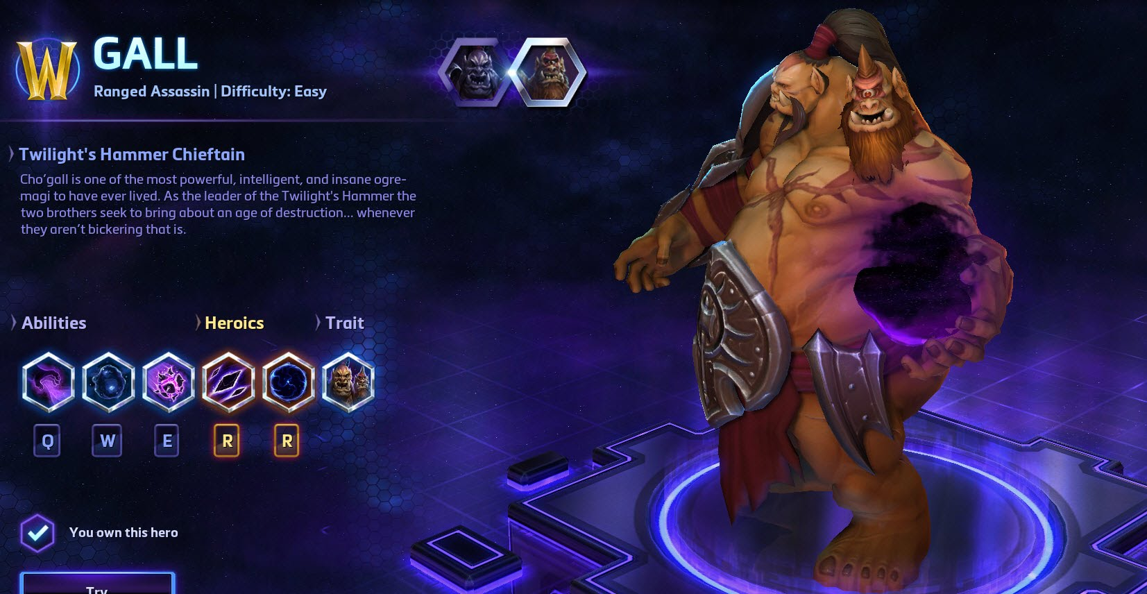 Heroes of the Storm Cho'gall Hero